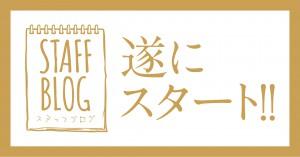 blog_start